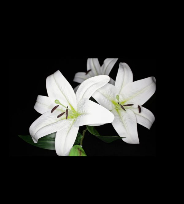 3pc Artificial Lily – White