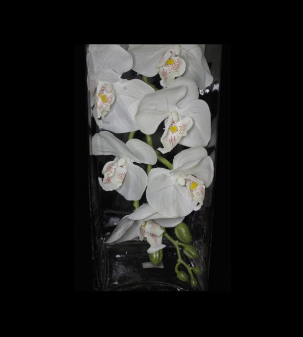 9pc Artificial Orchid – White
